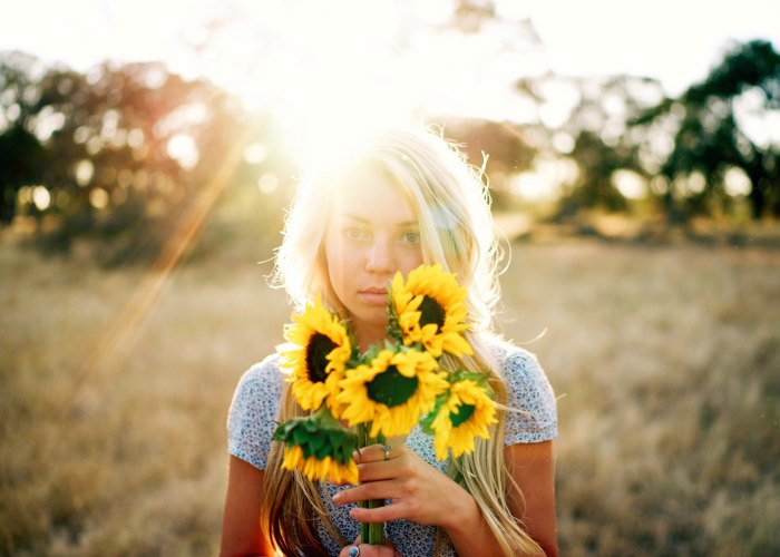 Picking Sunflowers in the NorthPole